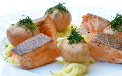 Spectacular Salmon: One Of The Best Fishes You Can Eat
