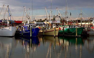 The impact of climate change on the fishing industry